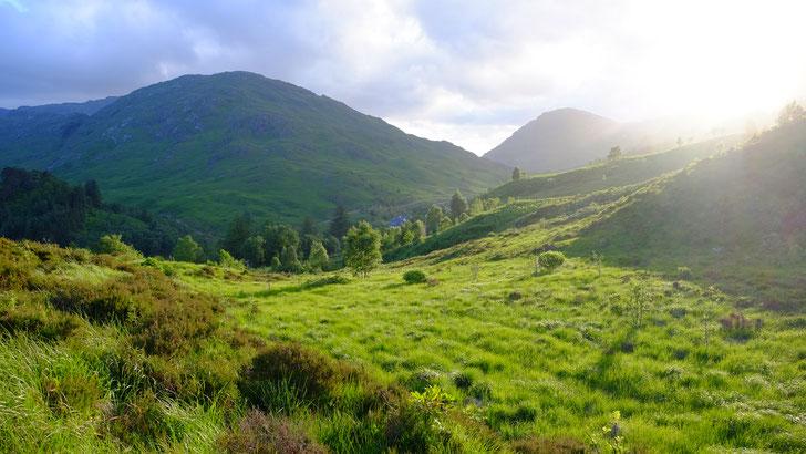 Wanderung in Glenfinnan