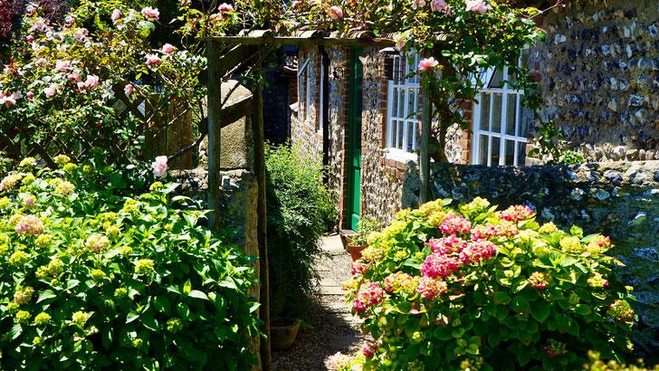 jardinage jardinier tondre gazon buisson à domicile essonne 91