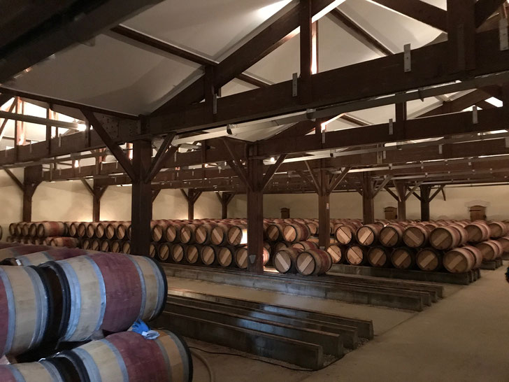 Working in the barrel hall - transferring 2015 vintage, draining and cleaning barrels