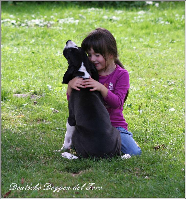 Deutsche Dogge und Kinder , Deutsche Doggen Zucht del Toro , Deutsche Doggen Welpen mit Kindern