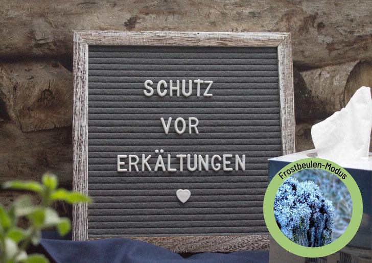 weißer Teller mit kleiner weißer Schüssel, dazwischen knusprig gelbe Kartoffel Möhren Puffer und Apfelmus, graue Serviette und zwei Möhren