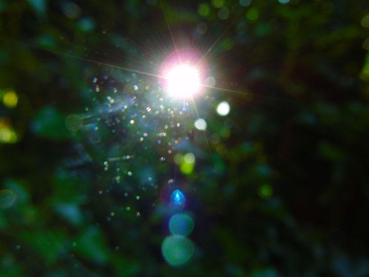 ...hol' dir die Sterne vom Himmelszelt...