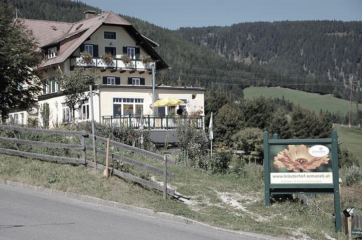 Kräuterhof Zemanek Fischbach Kräuter Kräuteranbau Fischbach Edelweiss