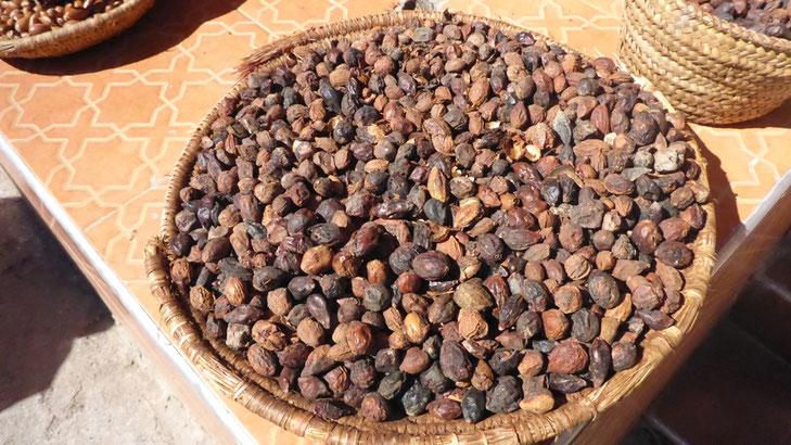 Argan-Nüsse bei einem Händler in Setti-Fatma, ca. 14 km oberhalb Hotel Ourika.