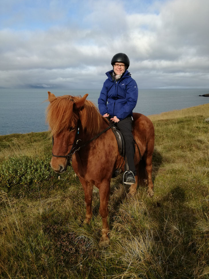 Reiterin auf Islandpferd