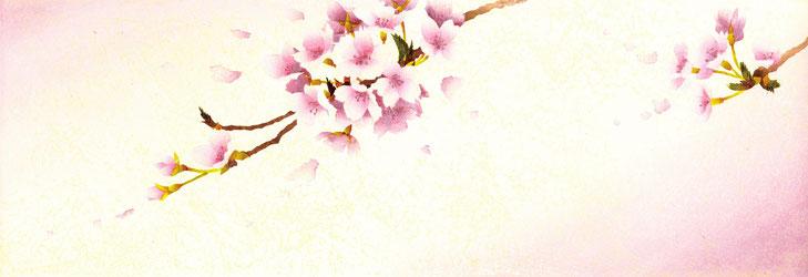 Sakura-9