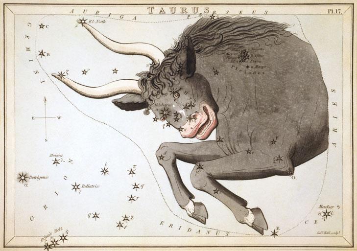 Das Sternbild Stier aus Urania's Mirror, 1824