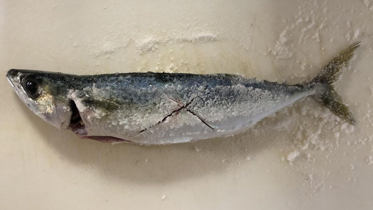 サバの塩焼き  釣り師のレシピ