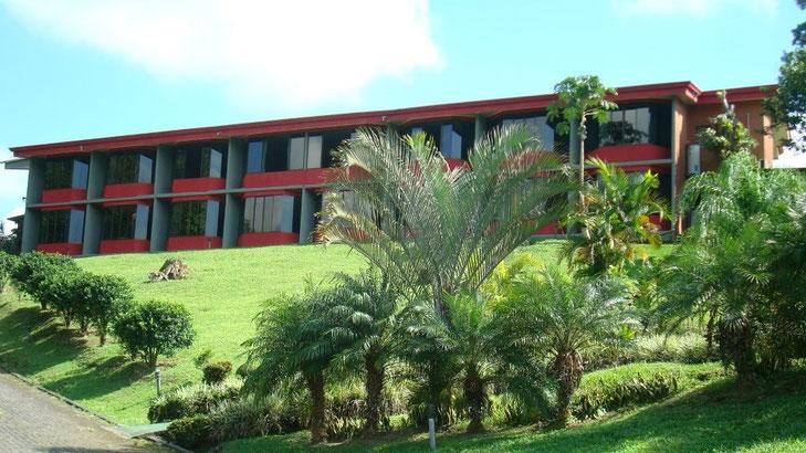 Hotel Económico en La Fortuna y Volcán Arenal