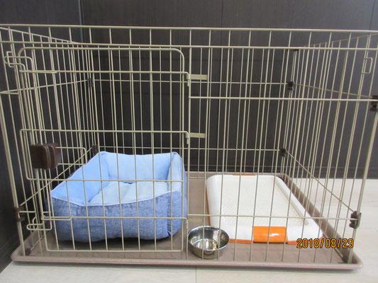 犬の保育園Babyのホテル