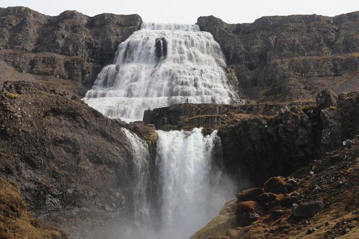 Dynjandifoss in den Westfjorden - Exklusive Islandsrundreise von My own Travel ©My own Travel