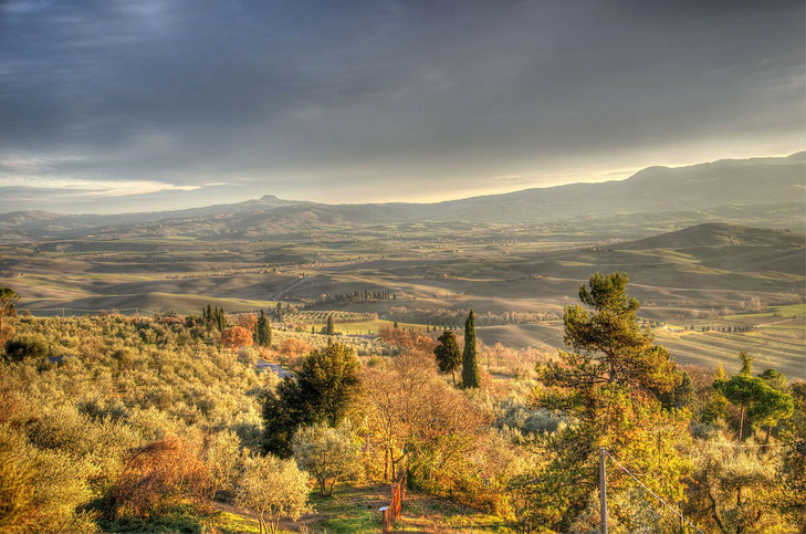 Blick ins Val d'Orcia