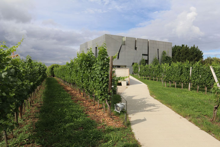 Loisium Weinmuseum in Langenlois