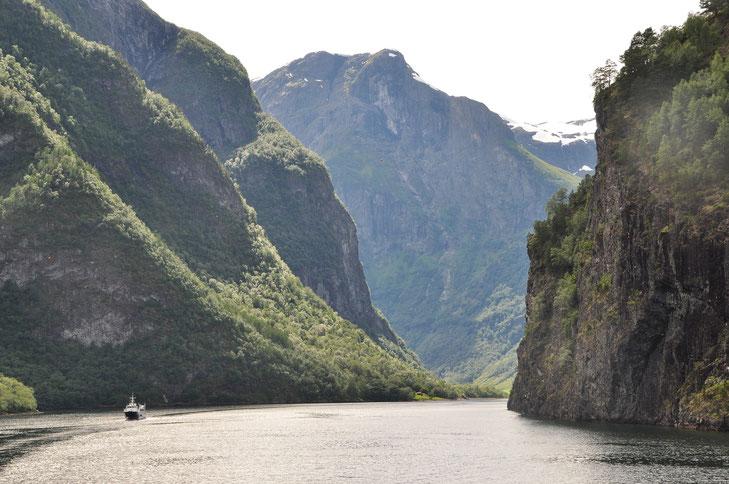 Nærøyfjord ©Pixabay