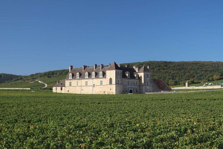 Chateau Vogueot