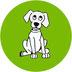 Fassisi LymeBo Test zum Nachweis von Antikörpern bei Hunden