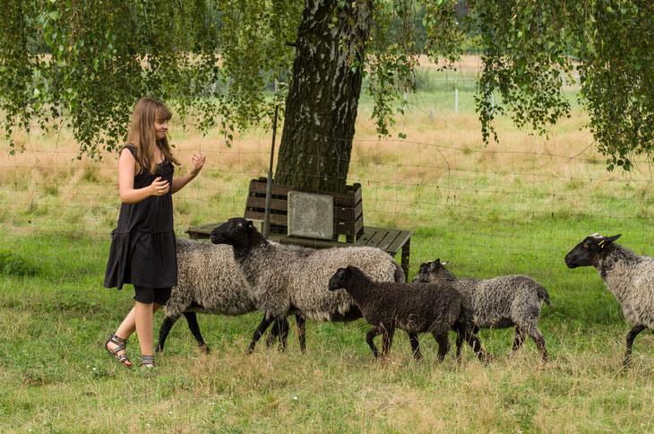 Zühlsdorf 2014. Glückliche Momente für Mensch und Tier (Wolf-Dieter Rühle)