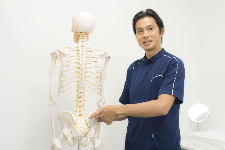 仙骨が傾くと、背骨が曲がるため体が傾いてしまいます。