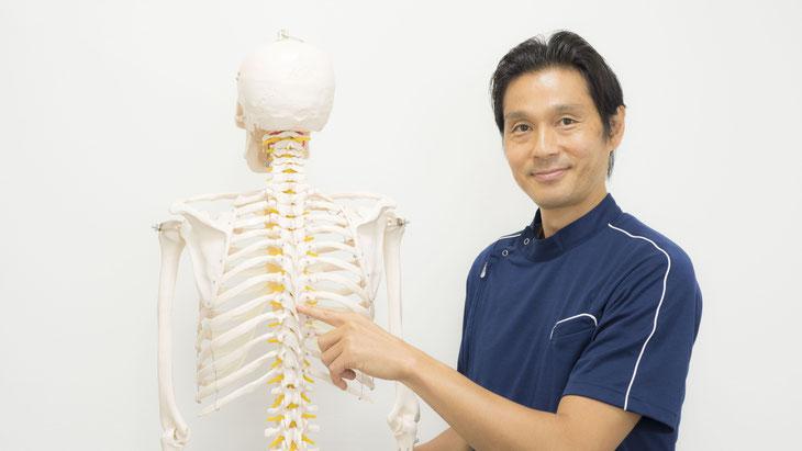 背骨の関節(椎間関節:椎間関節)がずれると、背中の慢性痛の原因となります。