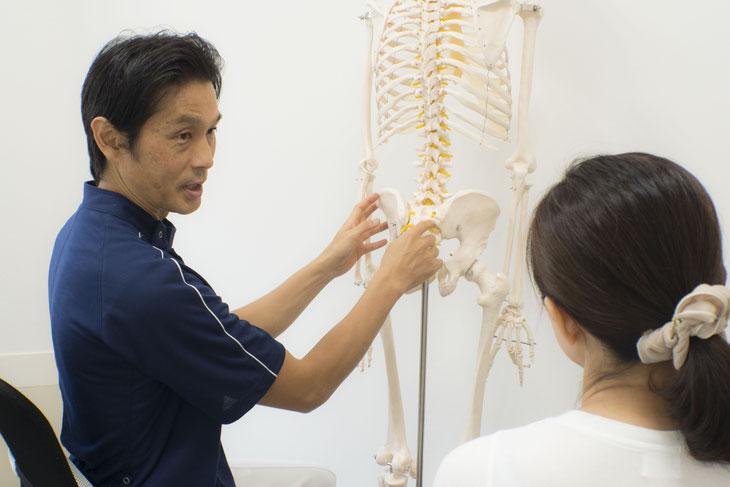 膝の痛みの原因を骨盤・股関節からも検証していきます。