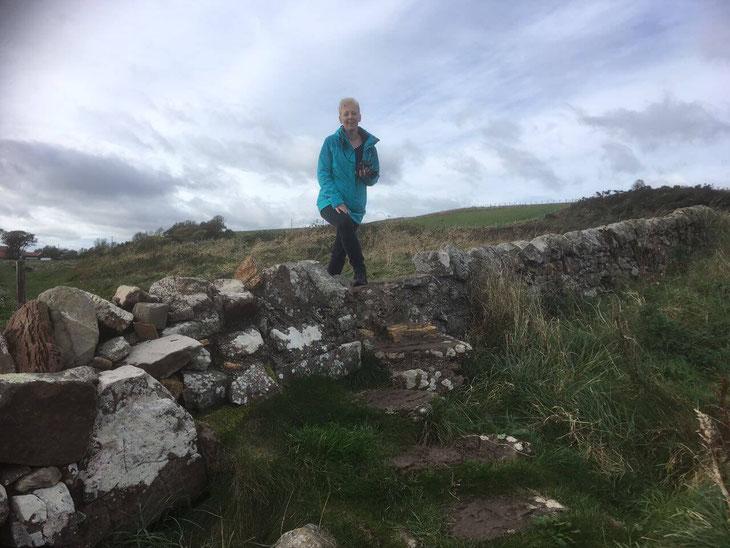 Vom Winde verweht auf dem Fife Coastal Path