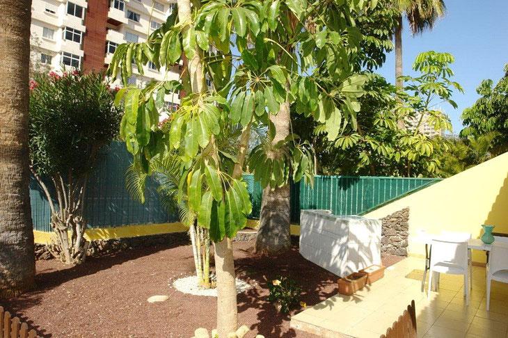 Blick 1.Terrasse mit Garten