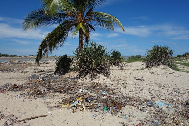 多数のプラスチックゴミが打ち寄せられた海外