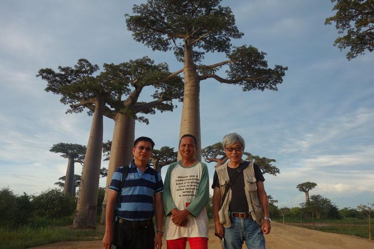 バオバブの現地調査に同行したスッチョン教授、ヘルダマンさん、浅川さんの3人。