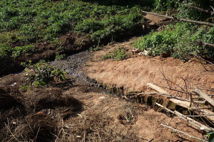 メタン発酵から出る廃液は優良な有機肥料としてギーさんの畑の肥料となっています。