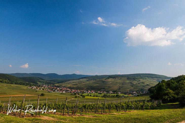 Bild: Blick auf das Dorf Westhalten