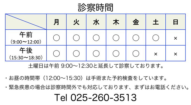 診察時間9:00〜12:00、15:30〜18:30、電話番号025-260-3513