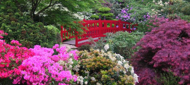 Le pont rouge emblématique du Parc Botanique