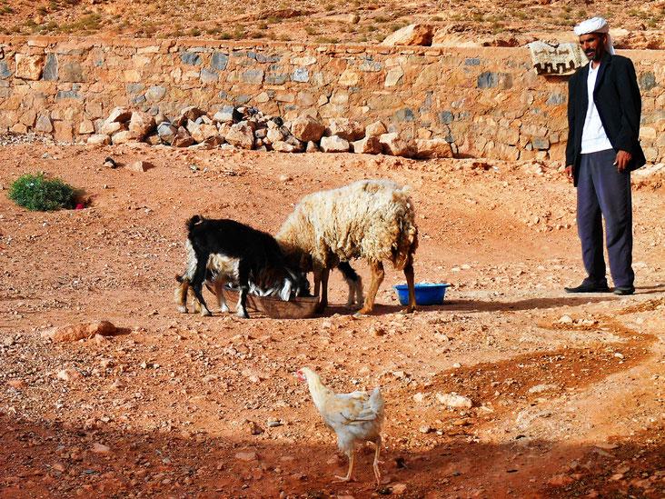 Bouarfa, Marocco