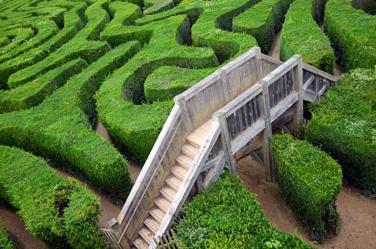 Brücke im Labyrinth; Detektei Erfurt, Wirtschaftsdetektei Erfurt, Wirtschaftsdetektiv Erfurt