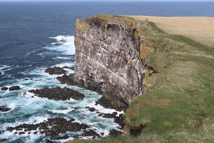 Steilküste an der Vogelkolonie Latrabjarg - Exklusive Islandsrundreise von My own Travel ©My own Travel