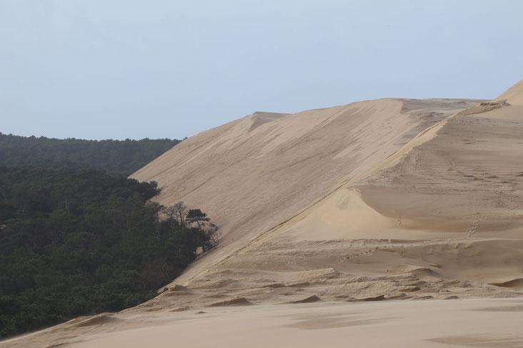 Dune du Pilat Sanddüne bei Arcachon