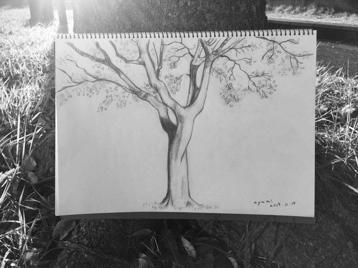 冬の木 03