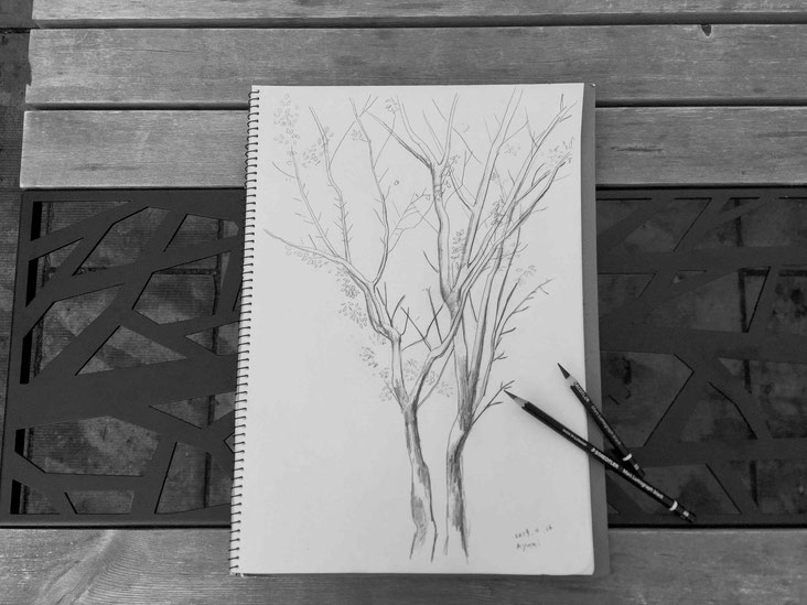 冬の木 02