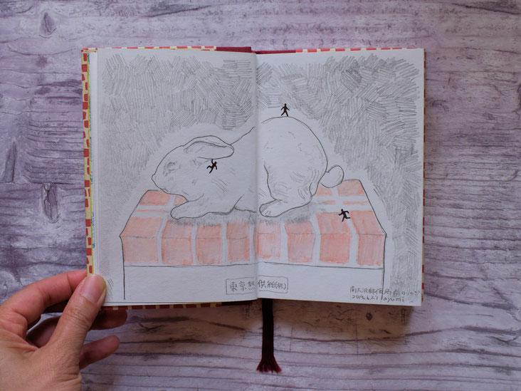 このウサギ、すごく好き