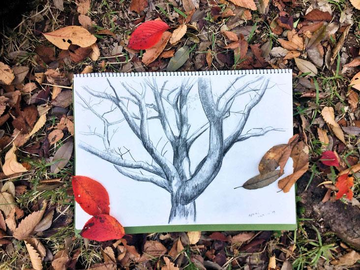 冬の木 04
