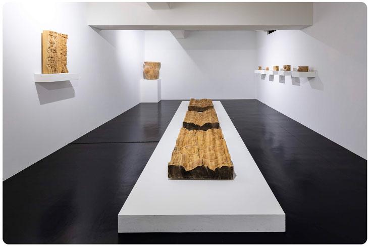 TAKAYAMA midori Solo Exhibition|yohakunoarite|galerieH