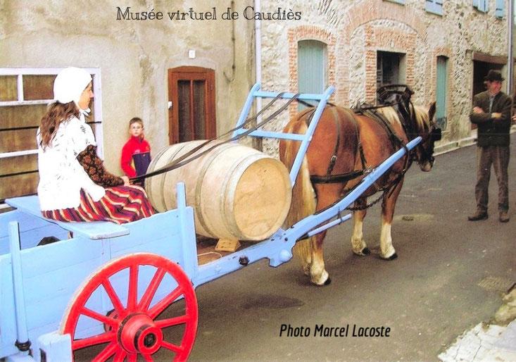 Automne du Chardonnay 2008
