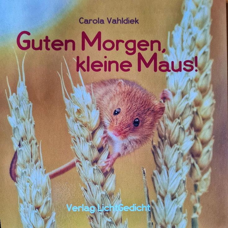 Buch von Carola Vahldiek