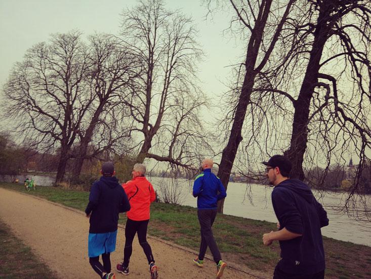Morning Run im Treptower Park