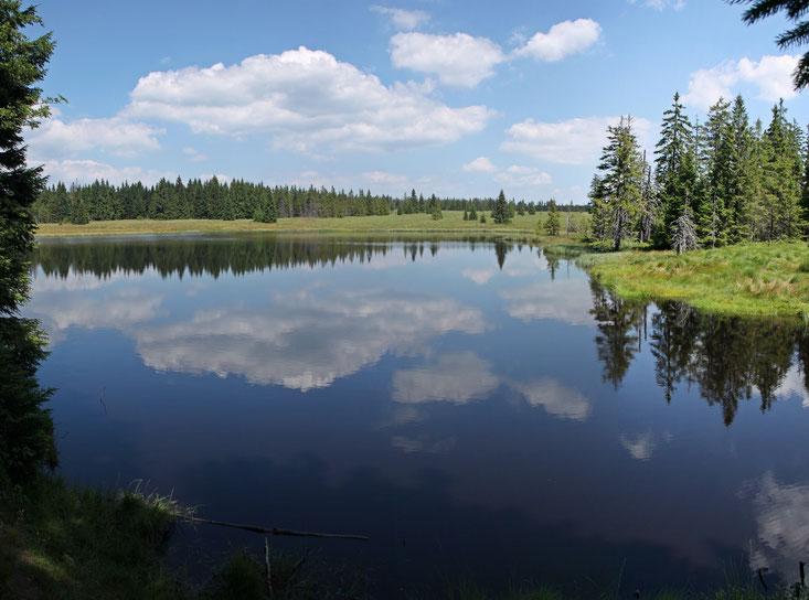 Behrischer Teich/ Schwarzer Teich (Mrtvy Rybnik) als Teil der alten Wasserversorgung