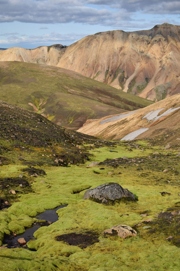 lindaskart moss - Skalli hike Landmannalaugar