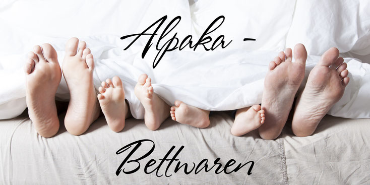 Alpaka-Bettwaren Alpakabett Alpakawolle Alpaka Ganjahresbett Steppbett