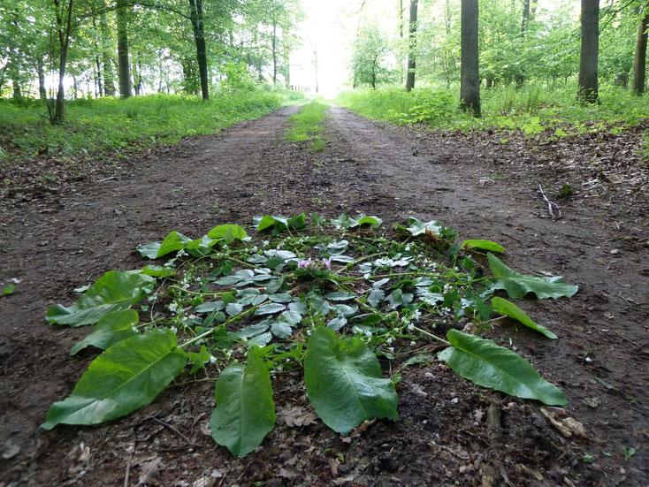 Meine Angebote für Dich - Nicole Gertz - Wald Mandala