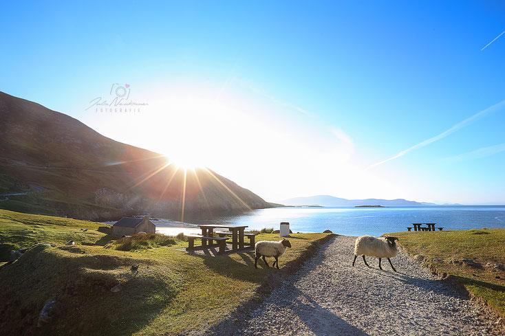Irland_Wohnmobil_Keem Bay_Achill Island_Die Roadies