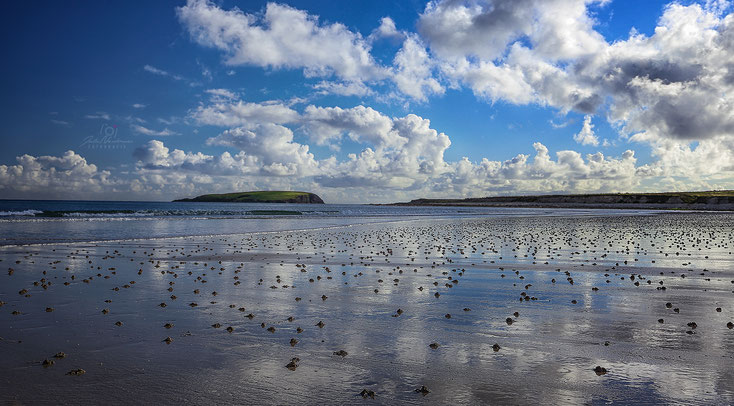 Irland_Achill Island_Keel Beach_Die Roadies_Wohnmobil_Hund